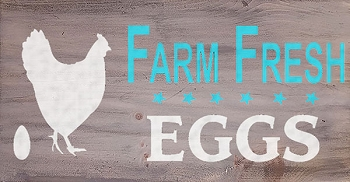 Farm Fresh Eggs  18 x 10