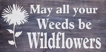 May all your Weeds be Wildflowers 18 x 10