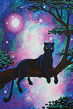 Cosmic Panther Acrylic Painting on Canvas Art Kit